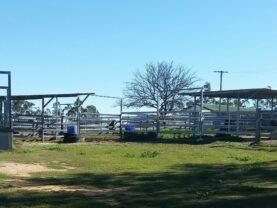 Horse Yards & Loading Ramp