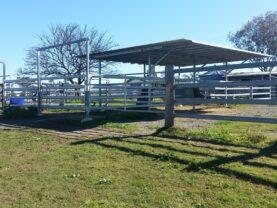 shelter Yards